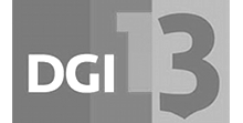 DGI-Landsstævne-2013