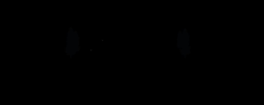 Logo_Aflang